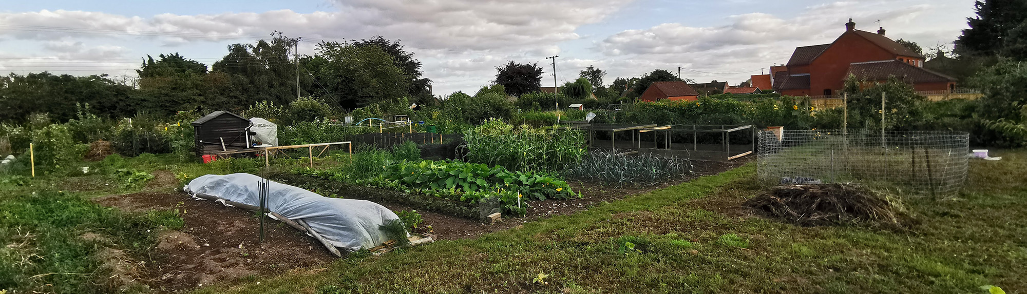 Briston allotments